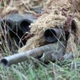 Stock Sniper