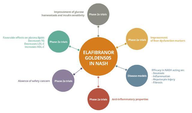 Figure 2: Elafibranor